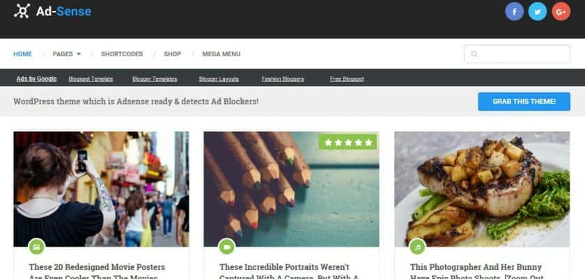 Best Wordpress Theme For Adsense | Top 10 - RochakSite